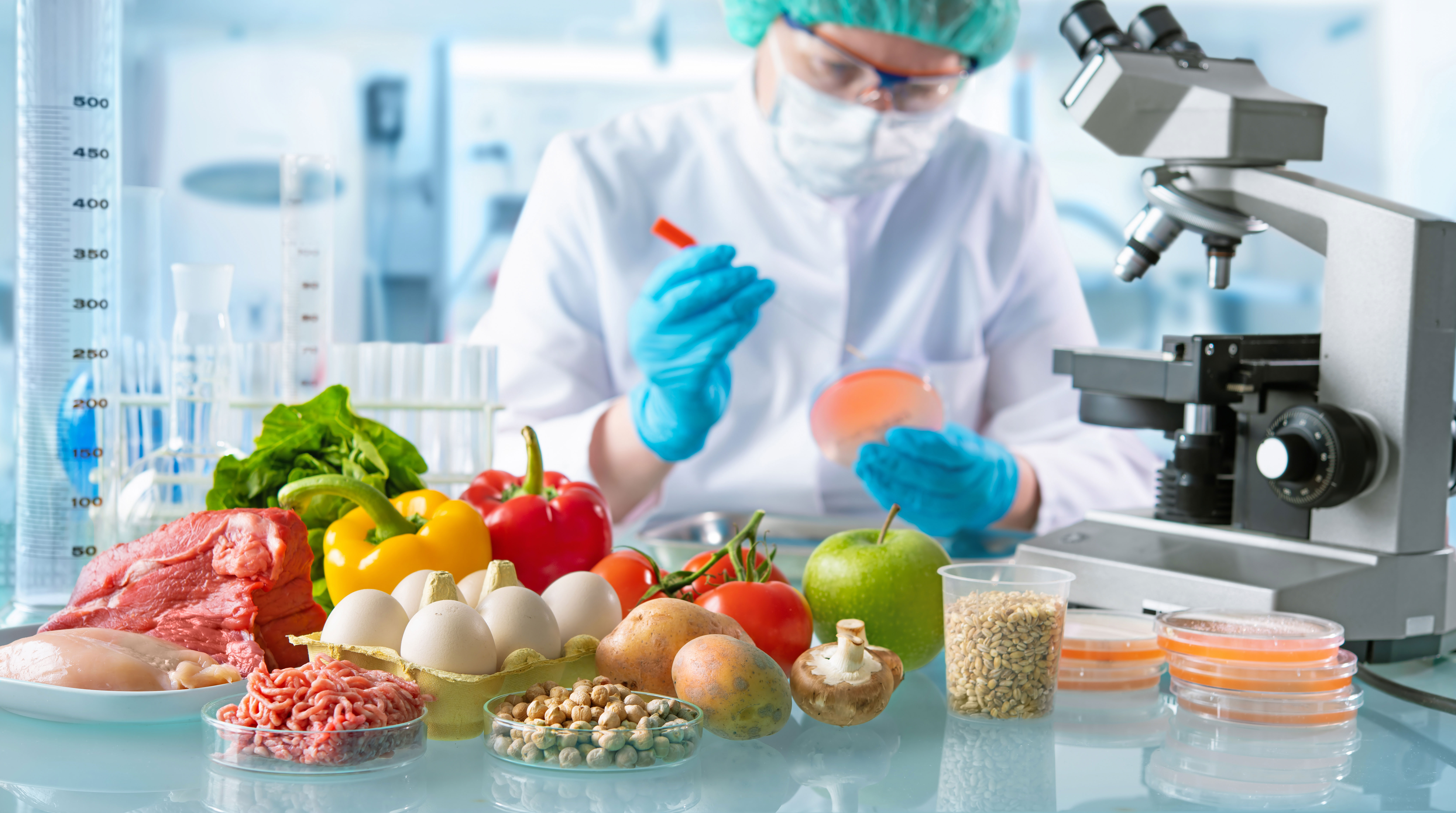 Nuevas Tecnologías de Conservación de los Alimentos y Seguridad Alimentaria